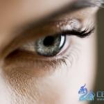 收藏的眼睛参考以及各种眼睛的画法