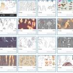 人体各部位手绘上色教程