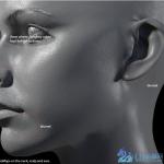 【xyz置换贴图】超级静帧类人类皮肤反照置换贴图合辑1.5G