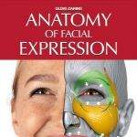 《完整版》脸部表情解剖学分析 Anatomy of Facial Expressions